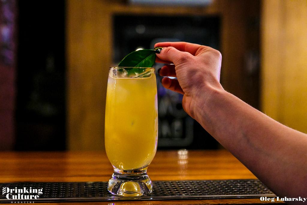 meksikanskaya zhara cocktail-9
