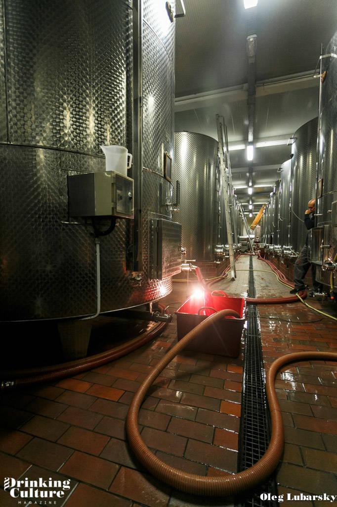 вина пьемонта